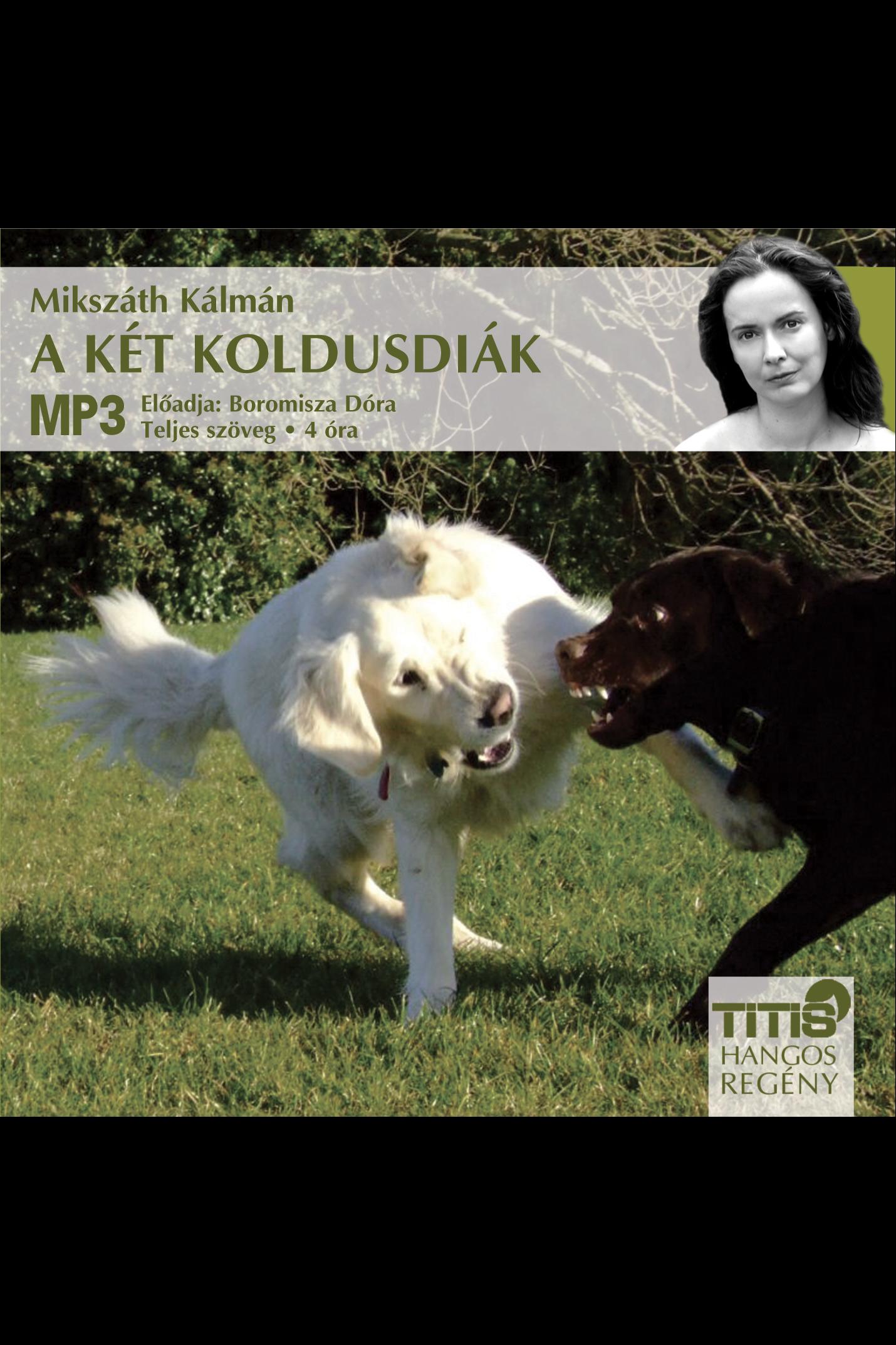 Mikszáth Kálmán: A két koldusdiák