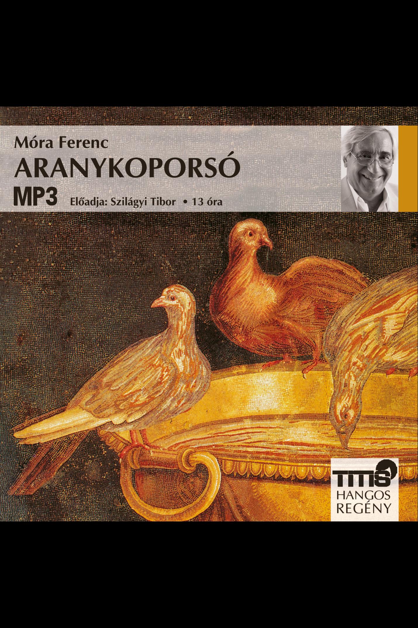 Móra Ferenc: Aranykoporsó
